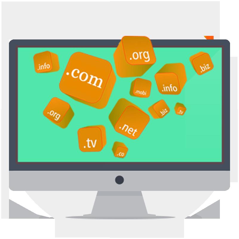 Free NGO Domain